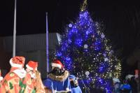 Town's Christmas Tree Lighted in Ogre