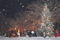 Town's Christmas Tree Lighted in Ikšķile